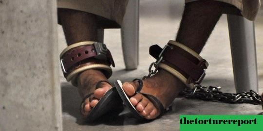Psikolog Sedang Bertengkar Tentang Laporan Penyiksaan